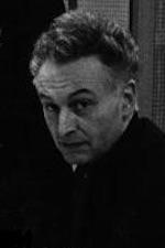 Herman van der Lelie