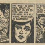 Paul Vlaanderen strip De Penruan moord 17