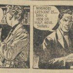 Paul Vlaanderen strip Het April Smith mysterie 12